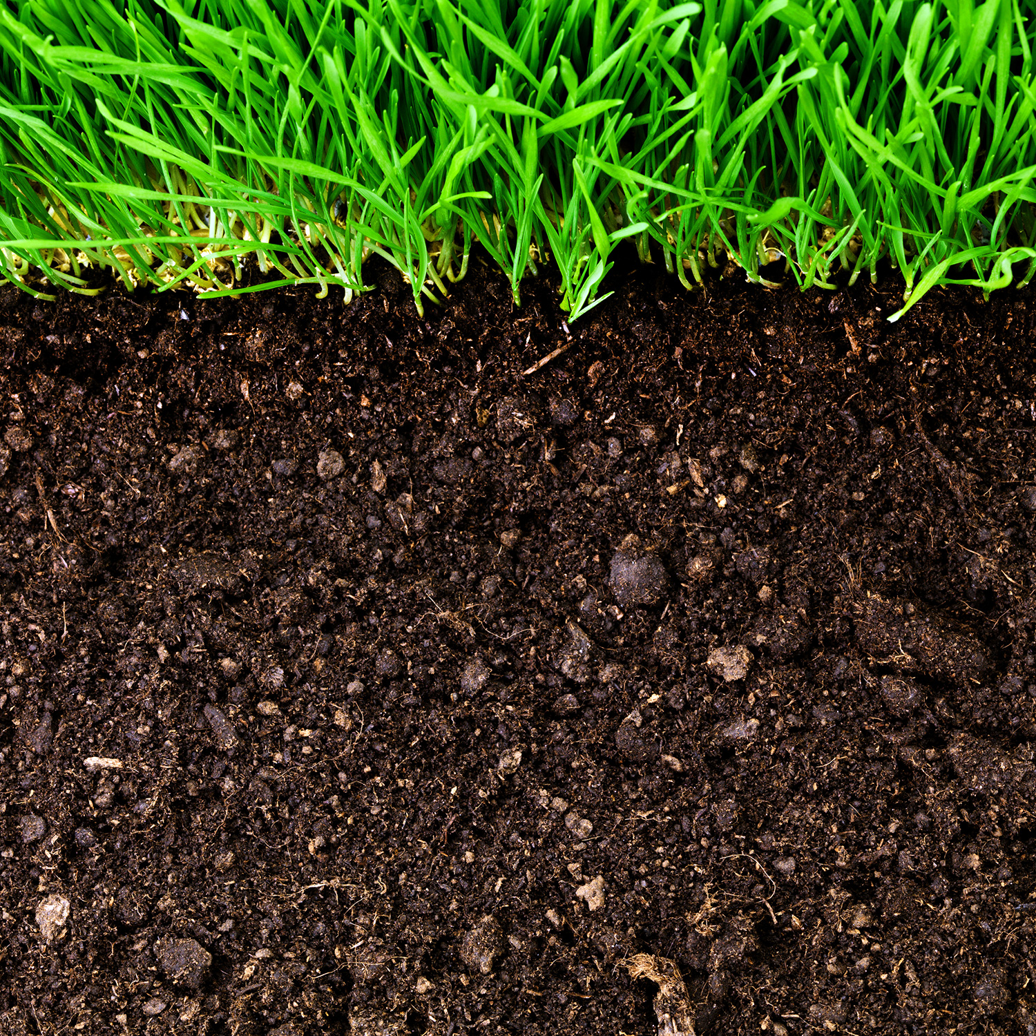 Emerging land use practices rapidly increase soil organic for Soil and green