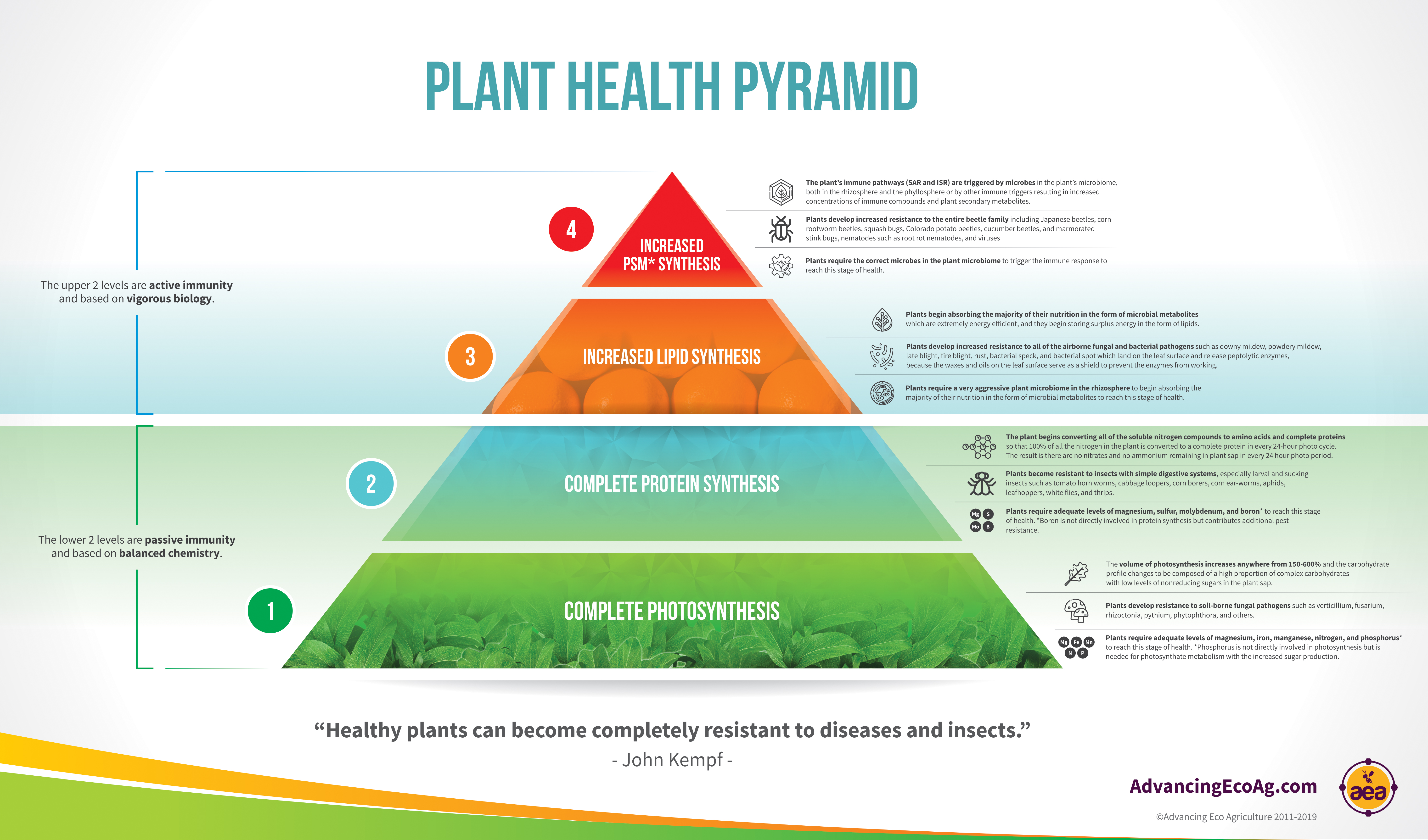 Plant Health Pyramid Complete Infographic